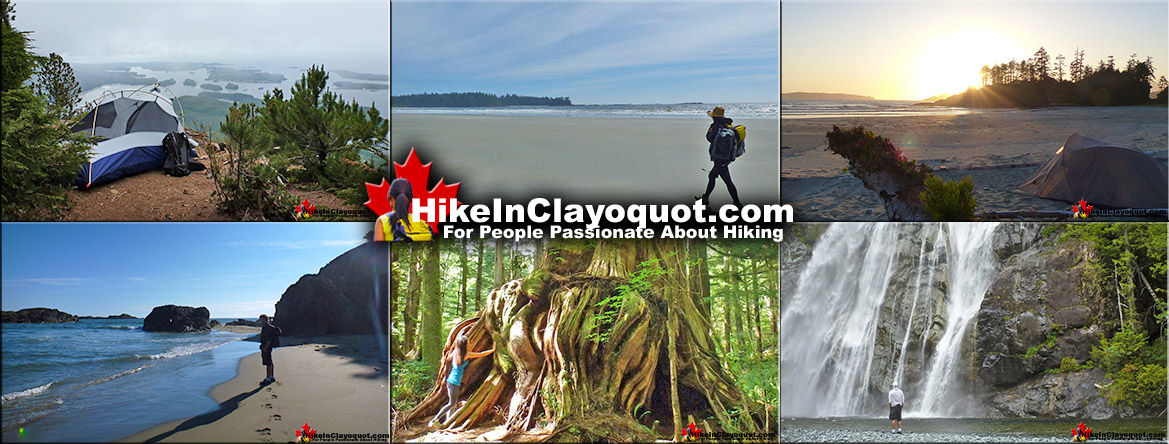 Hike in Clayoquot