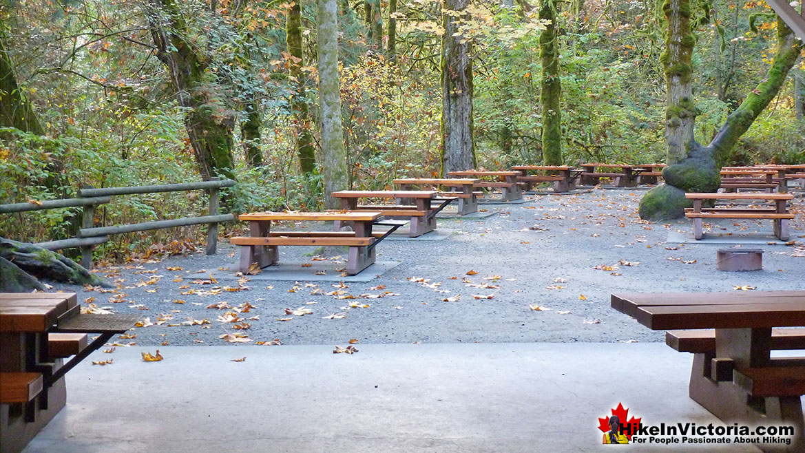 Goldstream Park Picnic Tables