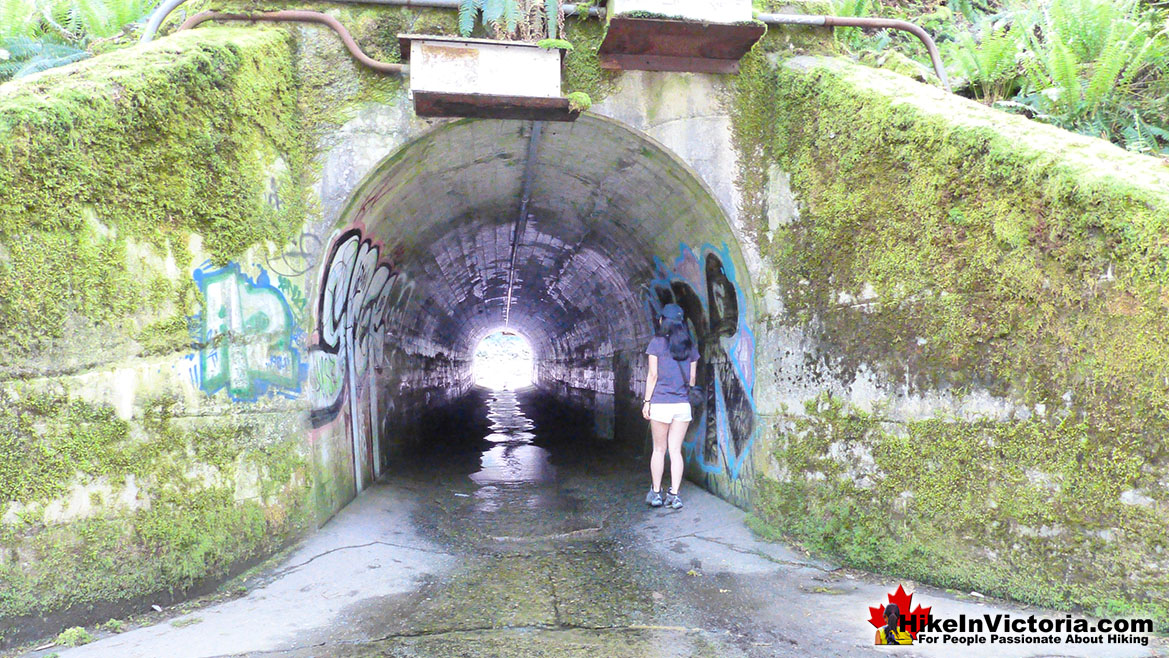Goldstream Park Tunnel to Niagara Falls