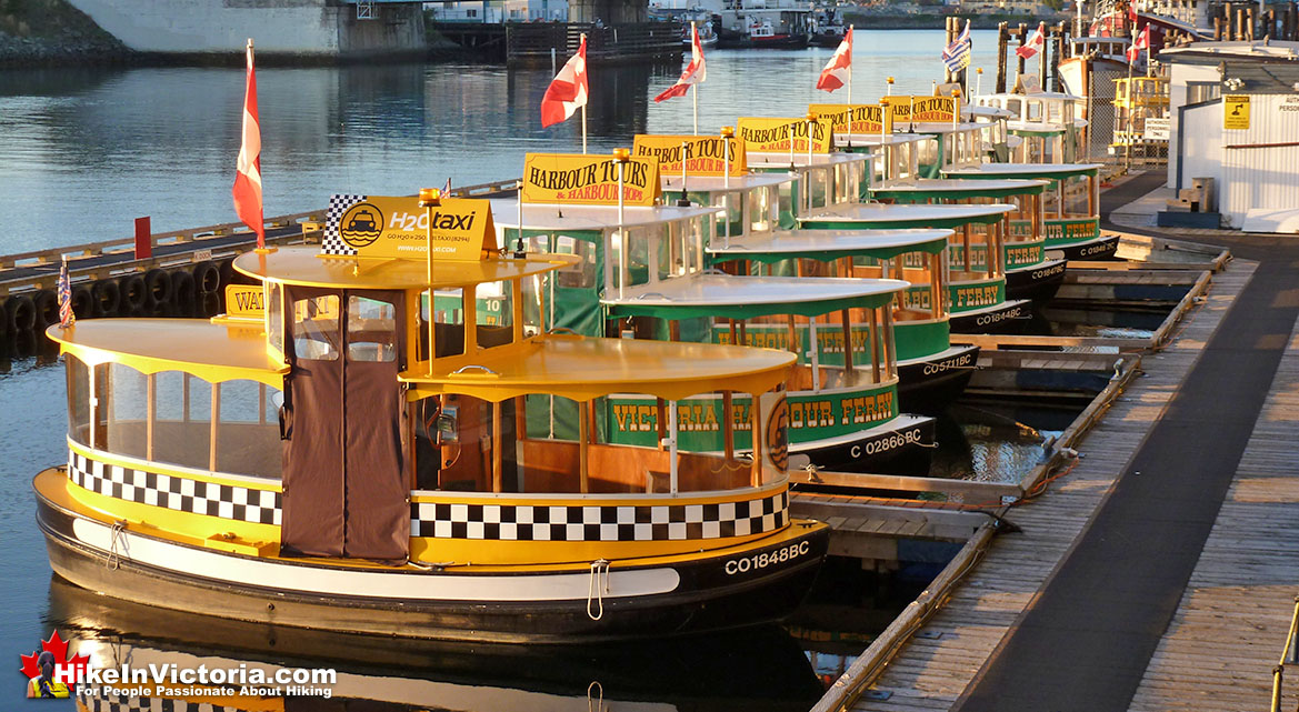 Inner Harbour Boat Tours